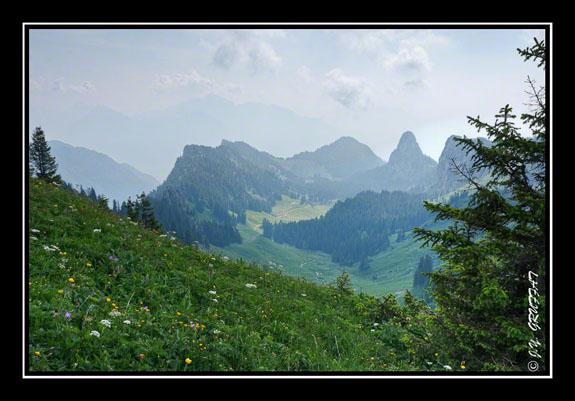 En montant vers la Pointe d\'Arvouin, le col de Blancsex (Suisse)