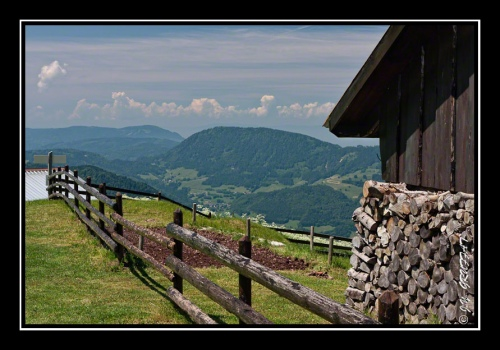 Vue sur le Mont Forchat depuis les chalets du Pertuis