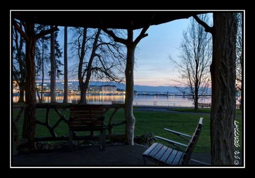 Balade à l'aube dans le jardin anglais (Genève)