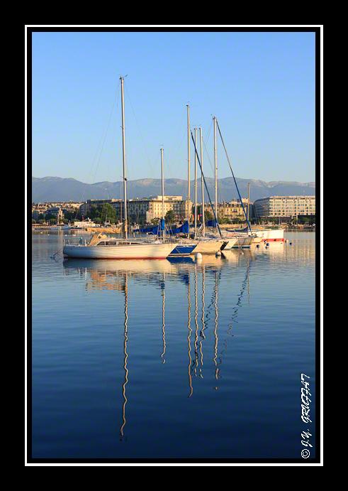 Reflet dans les eaux calmes du lac Léman au lever du soleil