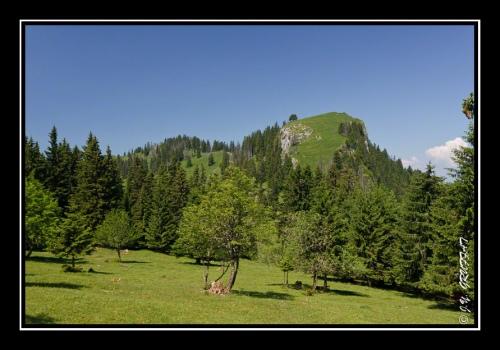 Le Mont Baron