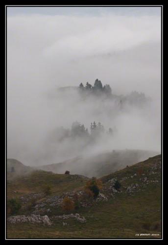 Un dimanche dans le brouillard