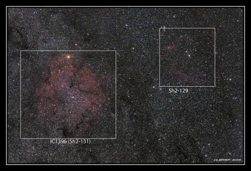 IC1396 (Sh2-131) et SH2-129