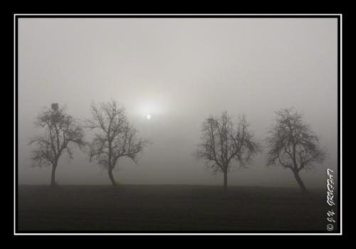 40d23066brouillard201112