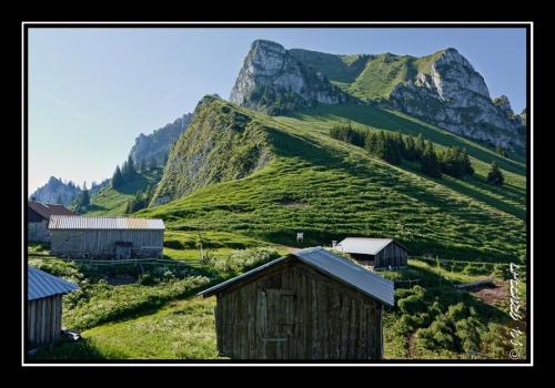 Vue sur le Mont Billiat depuis les chalets du Pertuis