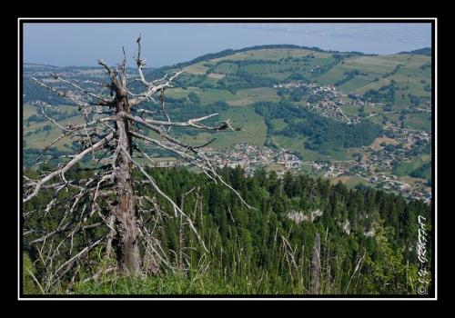 Bernex vu depuis le Mont Baron